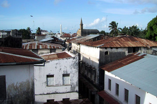 stone_town_flamingo_roof