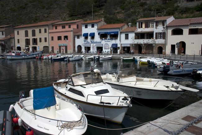 capraia_harbour